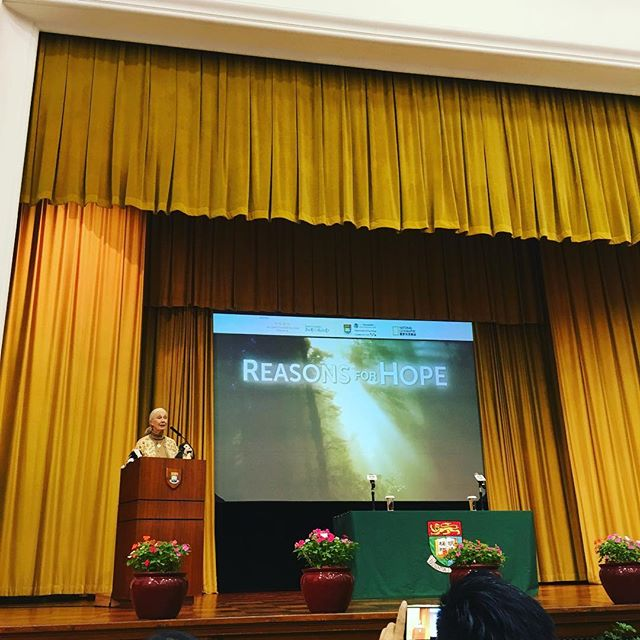 Watch live streaming of Dr. Jane Goodall's 'Reasons for Hope' lecture here: http://www.socsc.hku.hk/rfh/live