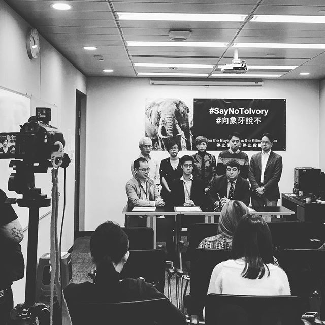 This morning we held a press conference with @theelephantsocietyhk on the issue of ivory trade in Hong Kong. We believe that this is a problem that should be addressed ASAP to prevent elephant extinction, which is estimated to be within 10 years at its current rate. #saynotoivory #jgi #rootsandshootshk