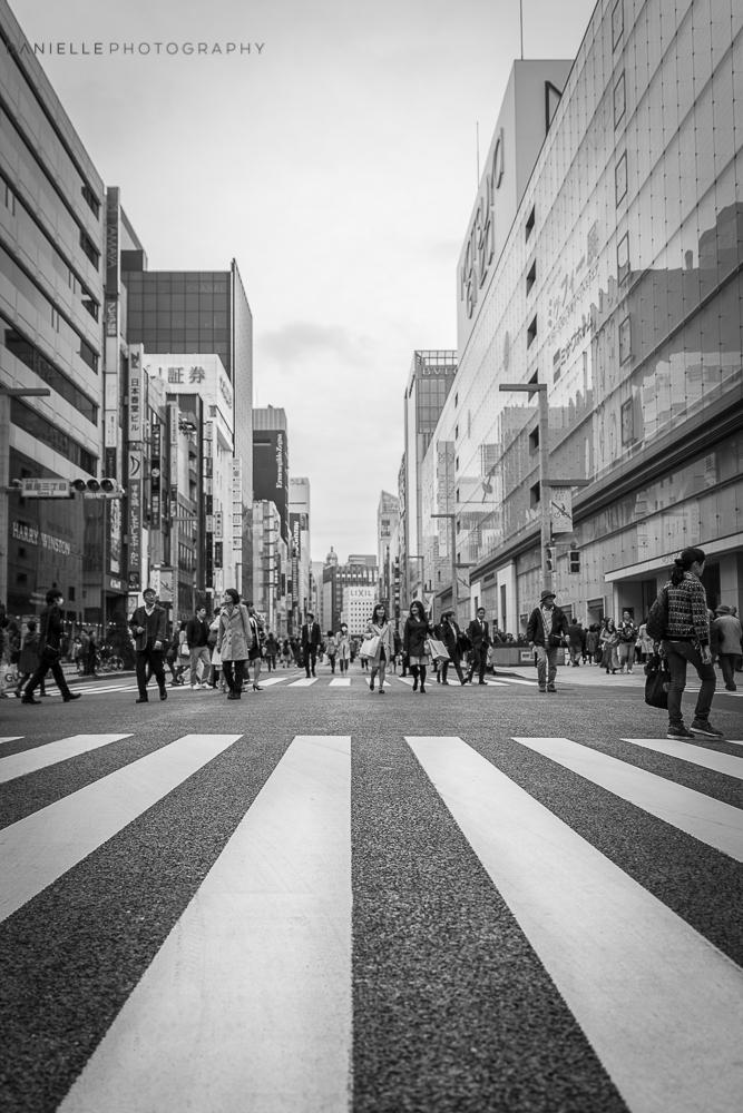 Danielle_Photography_SA15-Japan.jpg