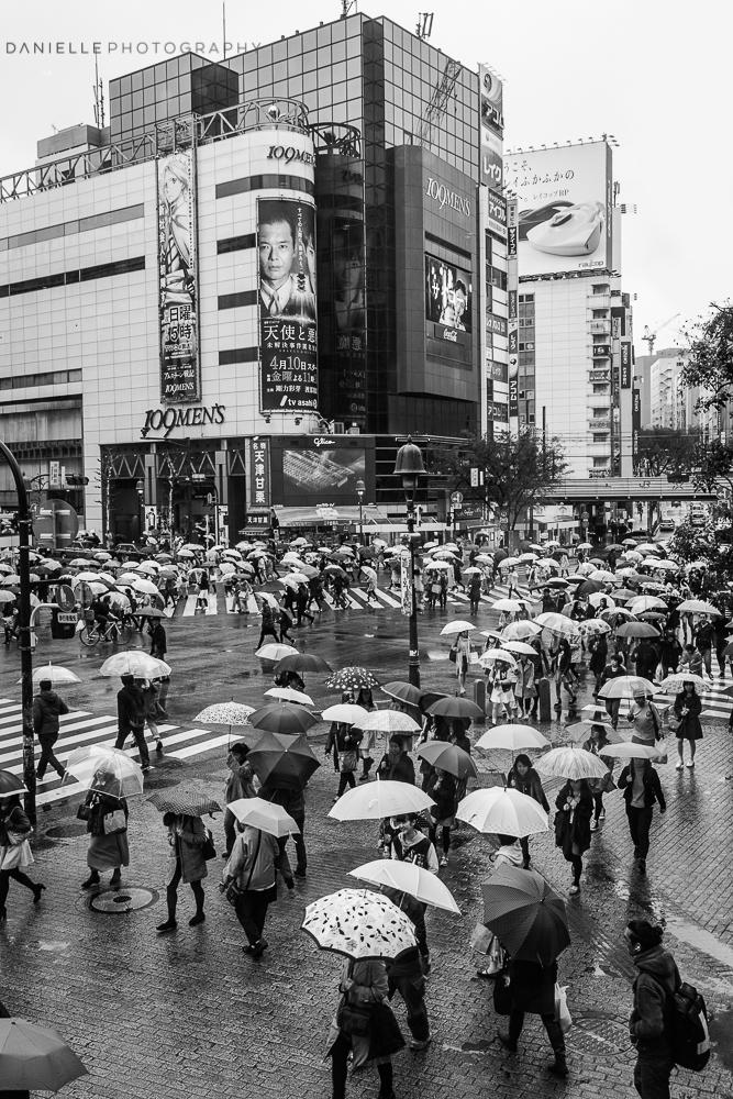 Danielle_Photography_SA16-Japan.jpg
