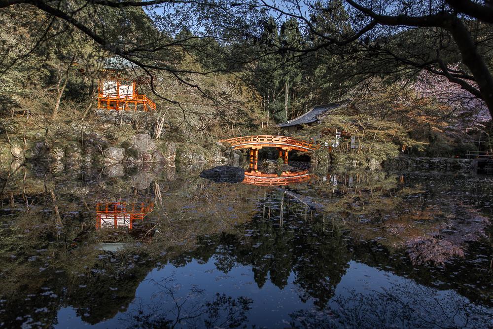 Danielle_Photography_SA29-Japan.jpg