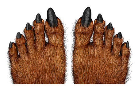 42846556_S_scary_feet_werewolf_hairy_nails.jpg