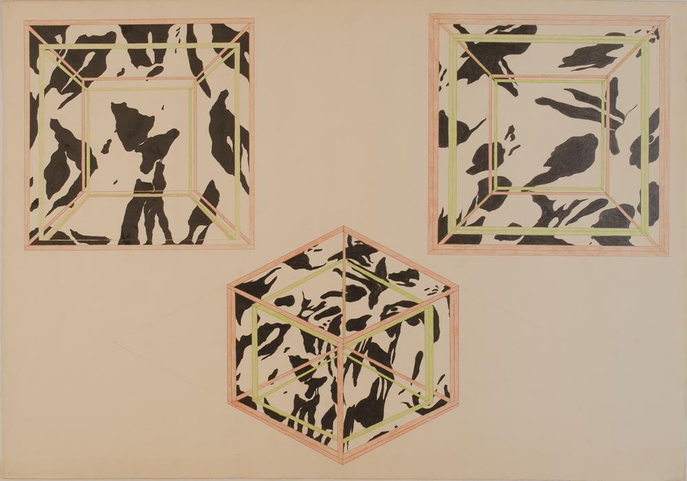 STUDY- CUBE OF LIQUID PAINT 1973-76 ©
