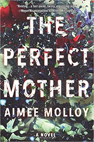The Perfect Mother | TBR Etc.