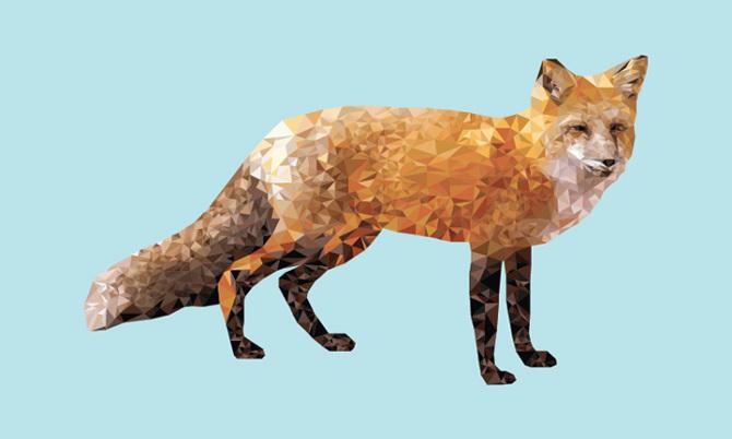 fox_8.jpg
