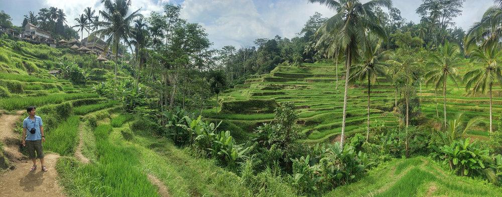 Bali_Pano.jpg