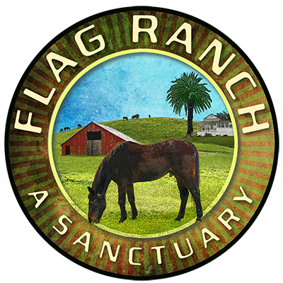 Flag Ranch