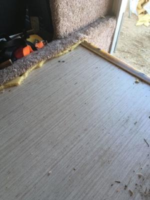 Wallpaper on the floor?