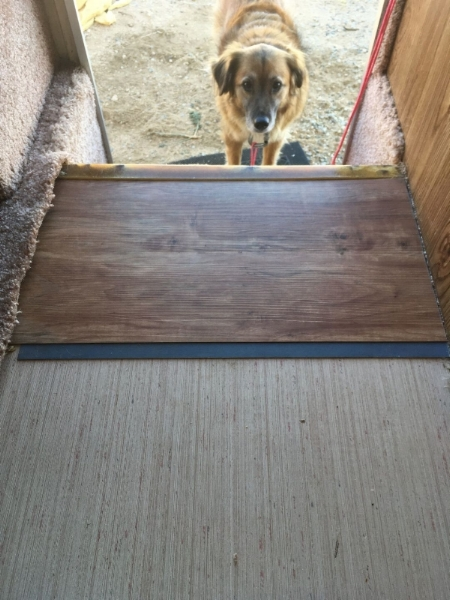 Installing Allure Flooring (indy is overseeing things)