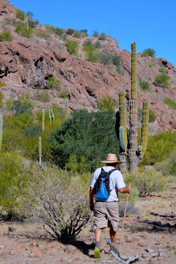 Tom hiking. Most of the plants here have thorns on them, so we carried tweezers and pliers in case we needed to remove a thorn!