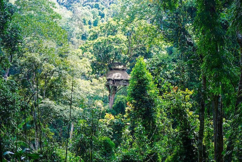 Southeast Asia blog.jpg