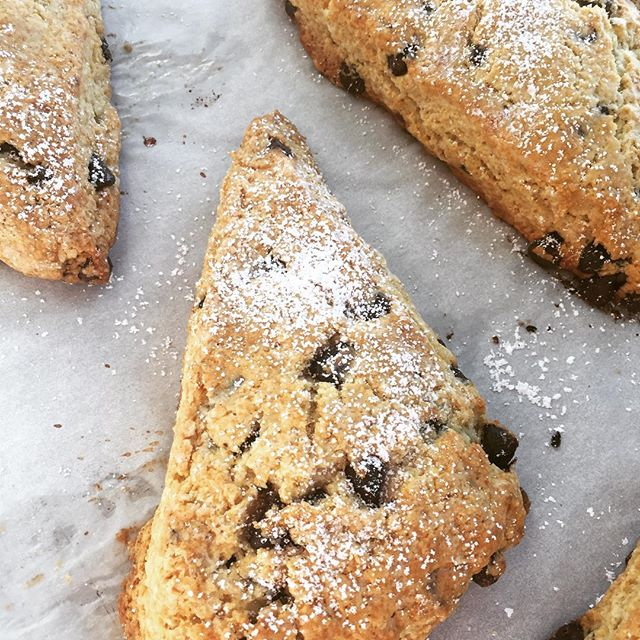 You made it to Friday - indulge with a chocolate chip scone...#5250 #pastrychef #baking #delicious