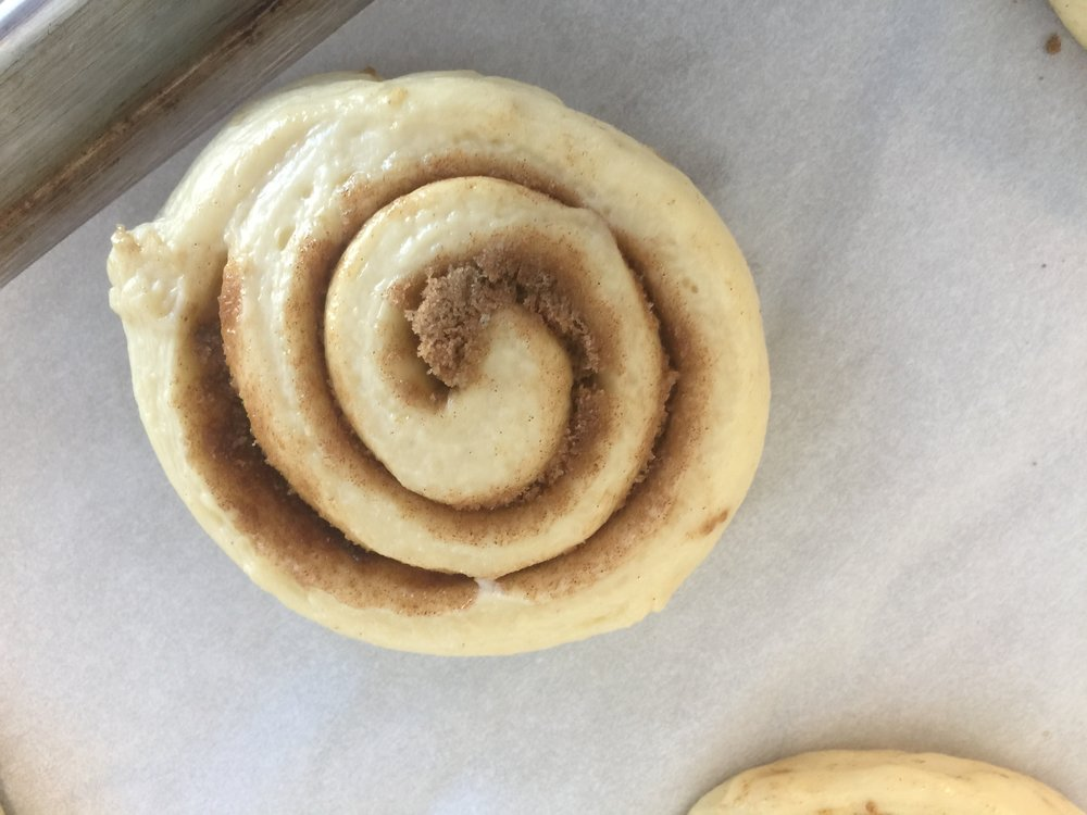 This is how the cinnamon rolls should look when they are fully proofed.