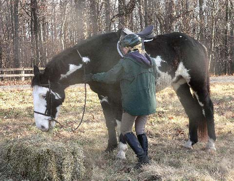 VSH Owner Liz Booth and her 2004 Clydesdale cross, Lakota