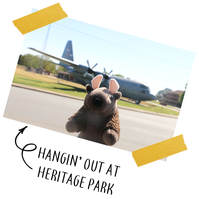 Buddy_Bison_C-130.png