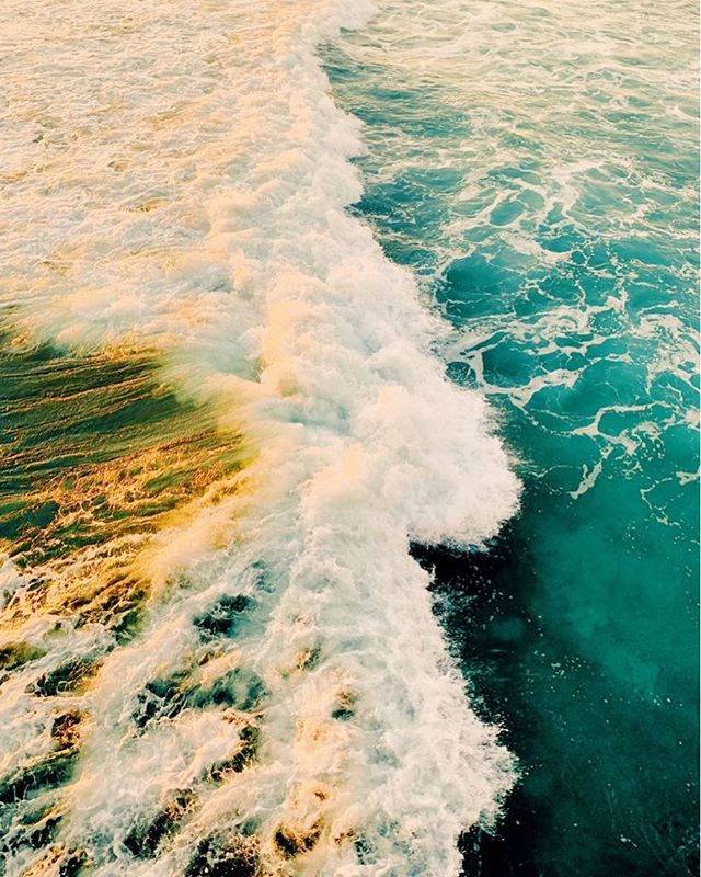 What a dreamy, sunshine-filled weekend 💛 There's nothing better than warm weather that makes you want to jump into these waves and live like it's summer.