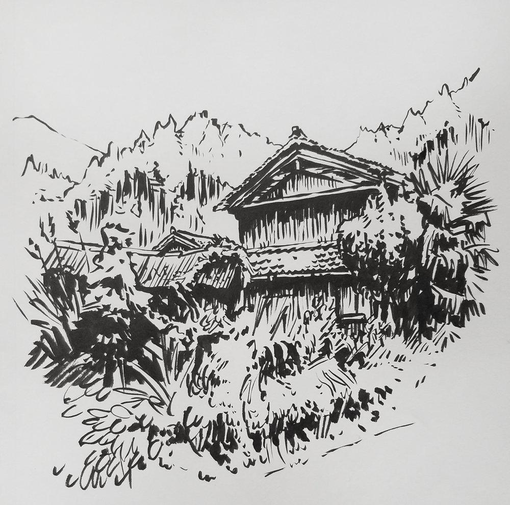 rural_house_01.jpg
