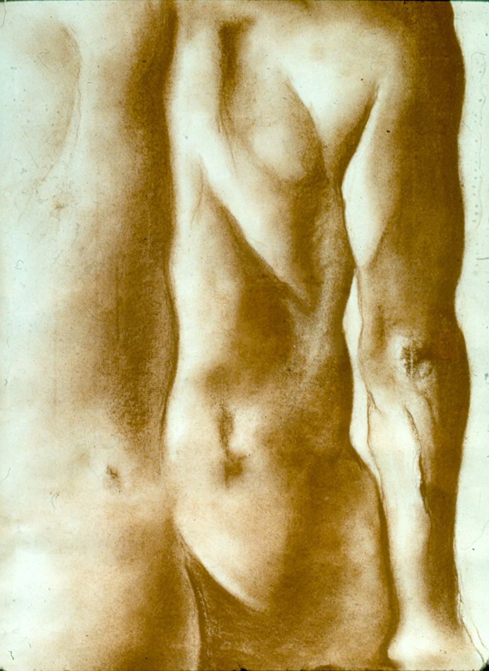 male back lifedrawing - conte crayon