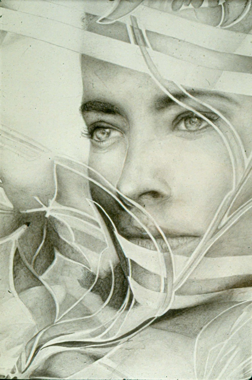 profile face looking through sheer scarf - pencil
