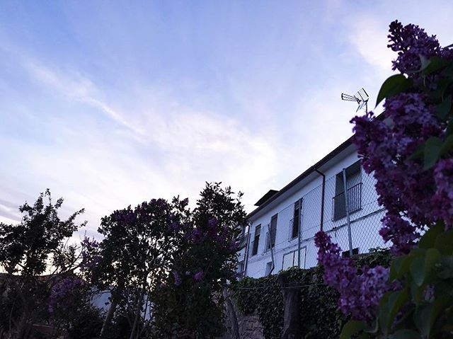 Beautiful view, beautiful world 🌿🌱🌎🙏🏼✨#semanasanta #spain #bluesky #oldhouses #spring #laflordelotto