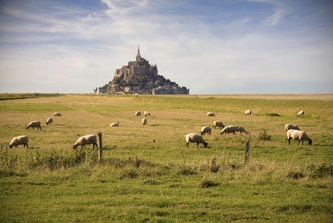 Chateau de la Pommeraye - hotel - Mont Saint Michel.jpeg