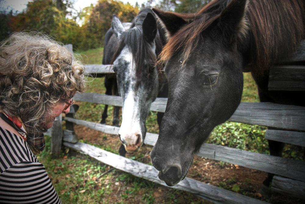 nita-and-horses.jpg