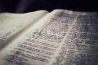 biblewebsm2.jpg