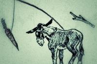 mule1.jpg