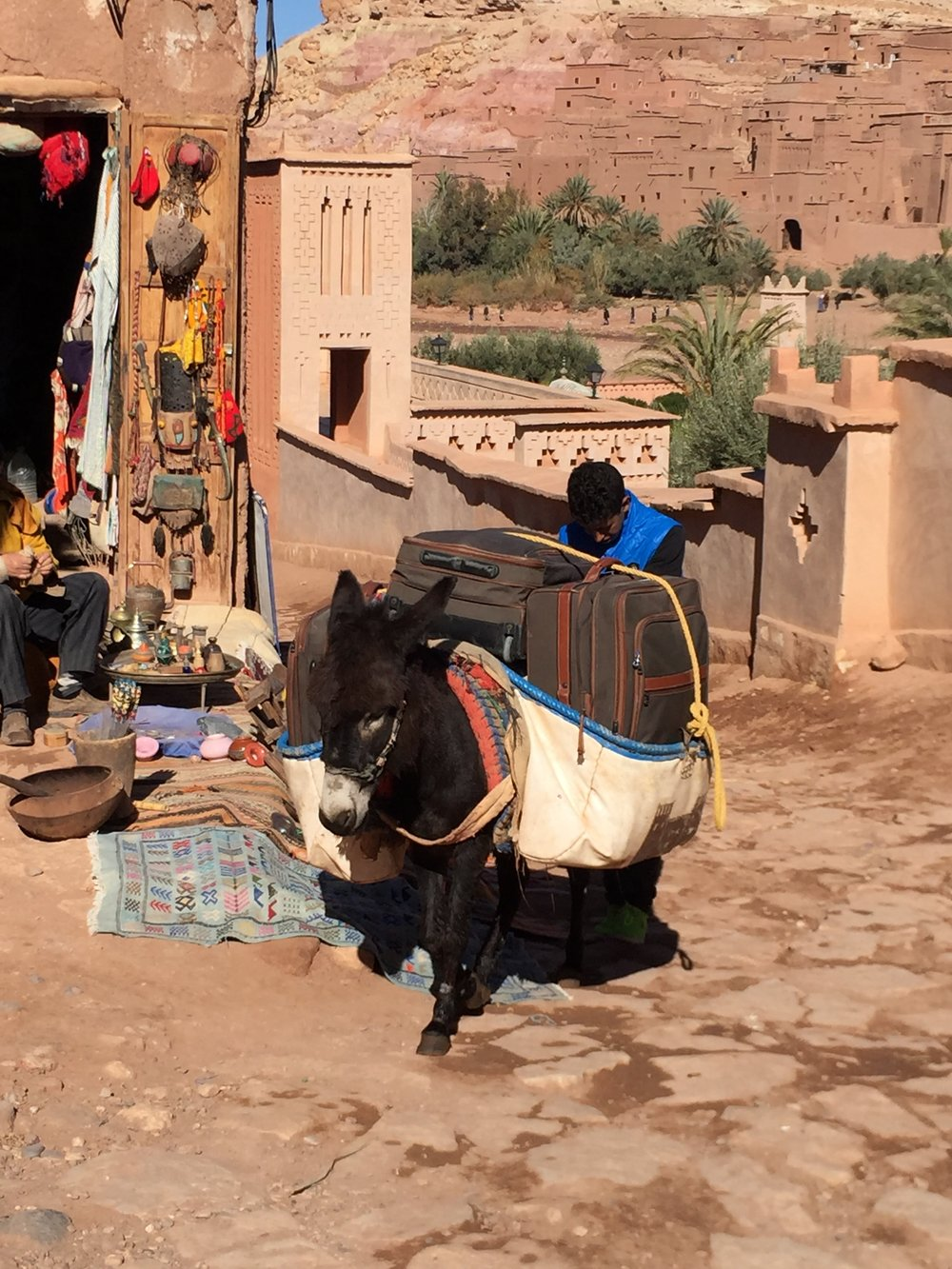Donkeys are still used beasts of burden, pulling carts or carrying people, in the countryside and city alike.