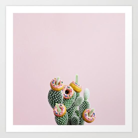 donut-cactus-in-bloom-bd2-prints.jpg