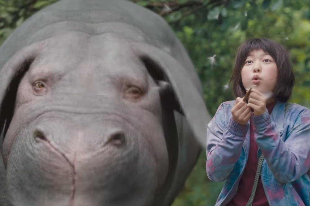 10. Okja - Not really sure how one can create a convincing enough costume to pass as the pig/hippo hybrid from Okja, but it's worth a shot!