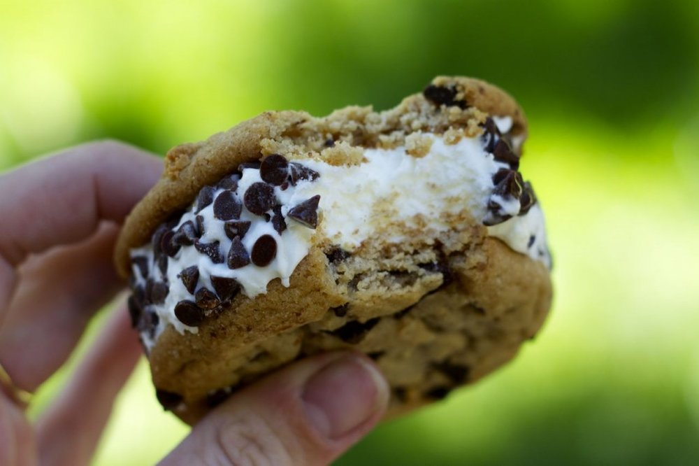 Trader Joe's SublimeIce Cream Sandwiches - A very, very specific food favorite from me this month. My two subletters and I all swear by these delicacies - beautifully soft chocolate chip cookies, vanilla ice cream, and mini chocolate chips what more could you ever wish for?! If you have yet to try them, please oh my please do!