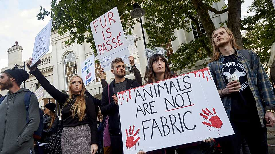 Anti-fur protesters outside of London Fashion Week S/S 2018. Source of image can be found  via .