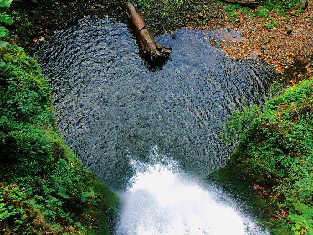 Colleen Flowers waterfall heart
