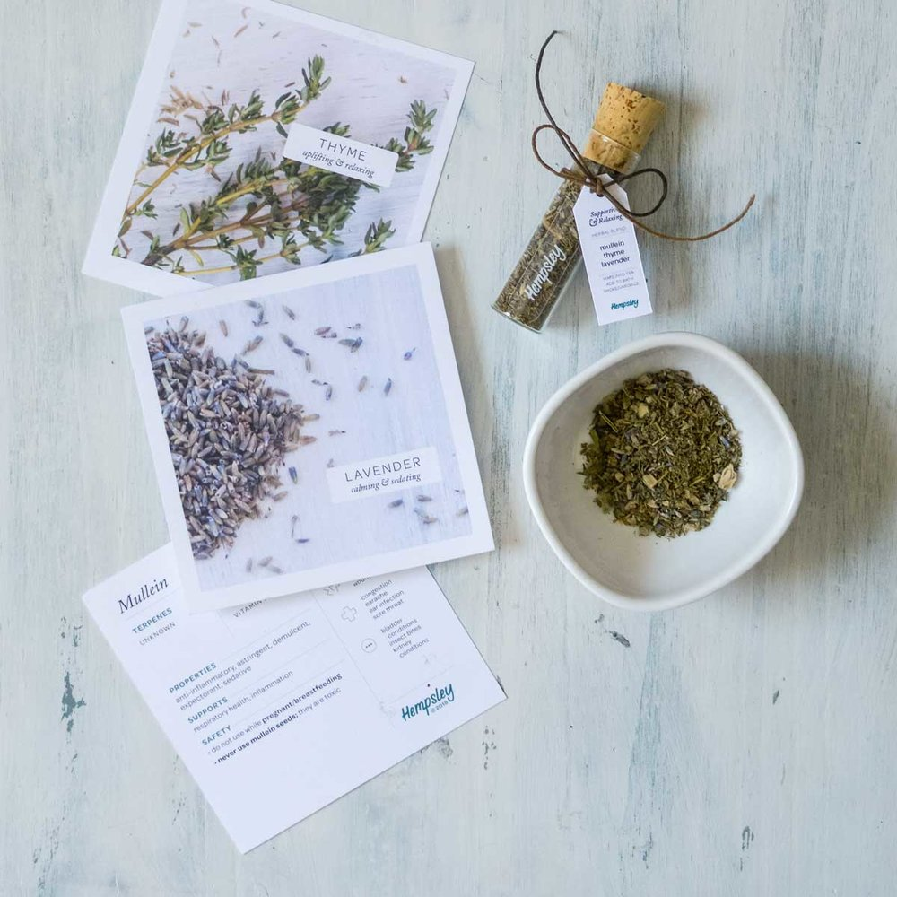 Mullein, thyme & lavender