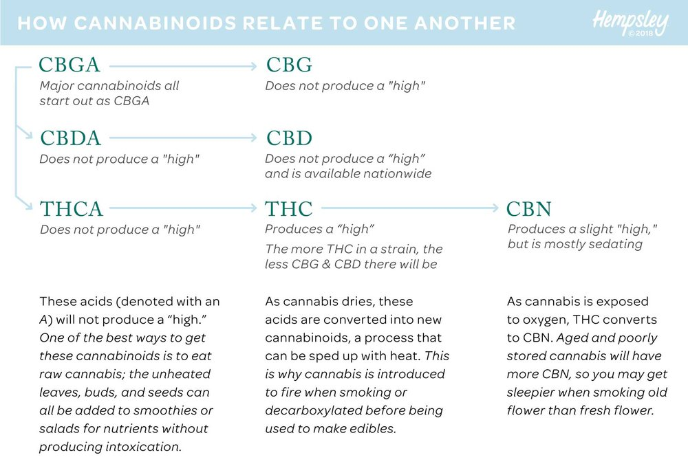 cannabinoids-chain-graphic-hempsley-MAR2018-1800PX.jpg
