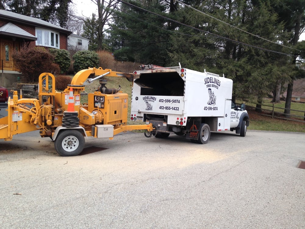 TREE SERVICES - Sidelines provides expert and skilled Tree Removal, Trimming, Pruning, Shaping and Stump Removal. We use NEW State of the Art Equipment so you can be assured that your job will be done efficiently and to your satisfaction. Sidelines also has certified arborists that are committed to you and the health and safety of your trees. Our arborists are ISA certified.  And the best part? Estimates are FREE!