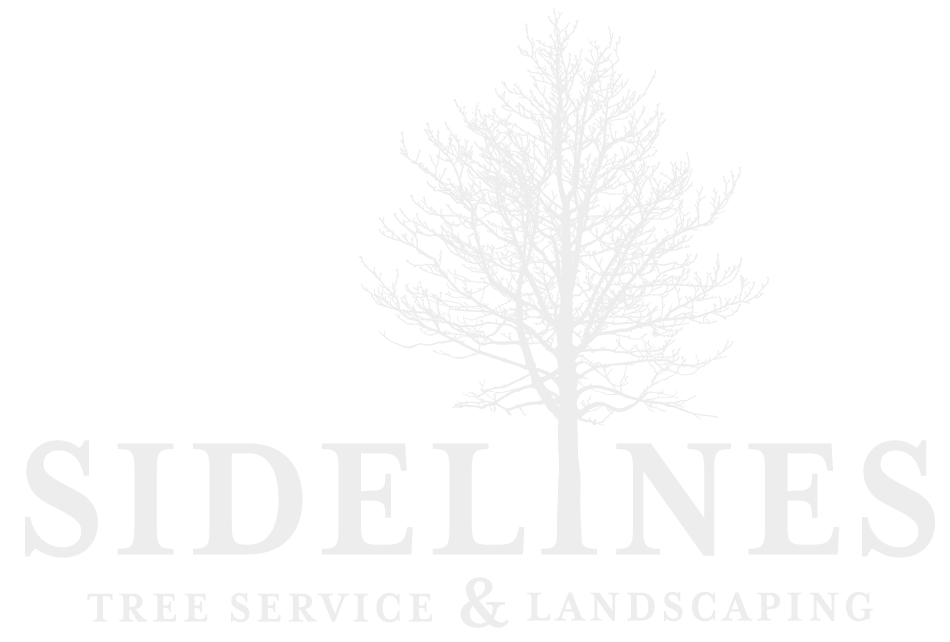 Sidelines Tree Service & Landscaping