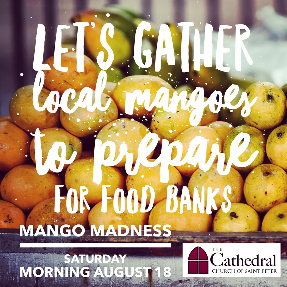 Local Mango Crop - Organizations & Churches are invited to pick mangoes & to process for food banks together at the Cathedral.