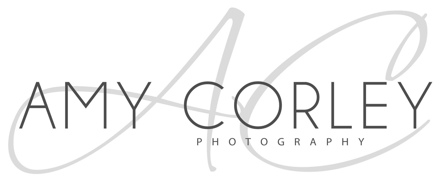 Amy CORLEY PHOTOGRAPHY