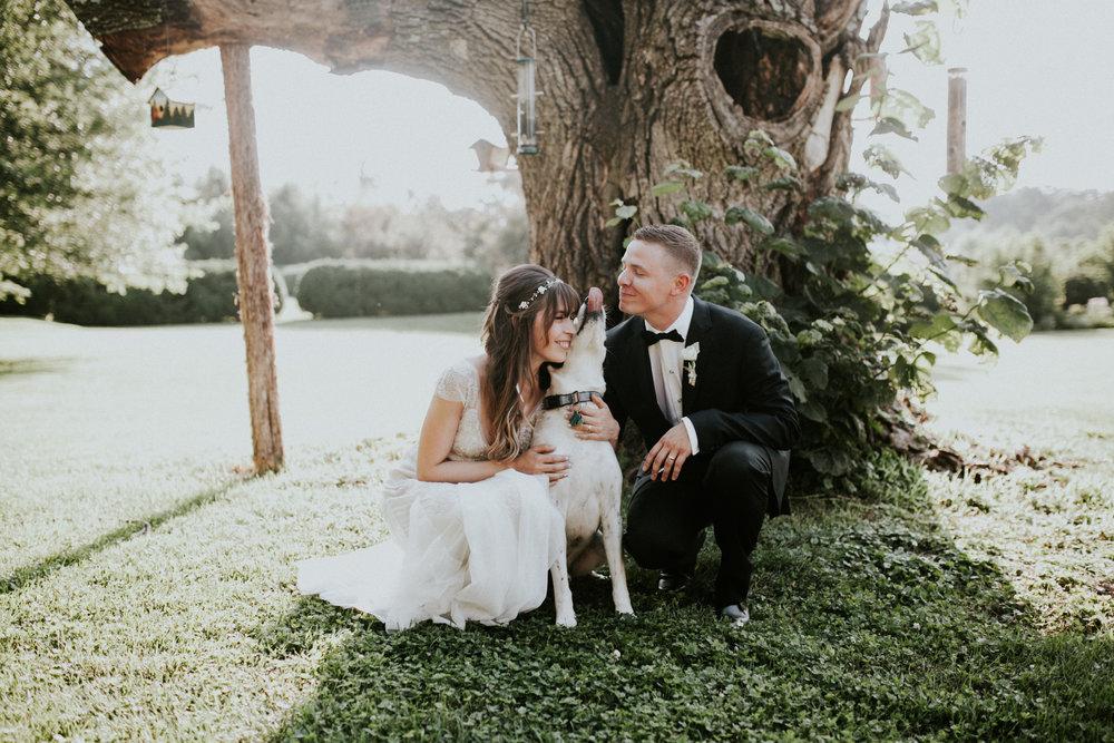 meagan abell photography backyard virginia wedding lucia and travis-8046.jpg
