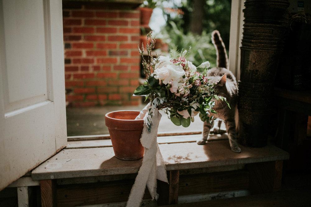 meagan abell photography backyard virginia wedding lucia and travis-7719.jpg