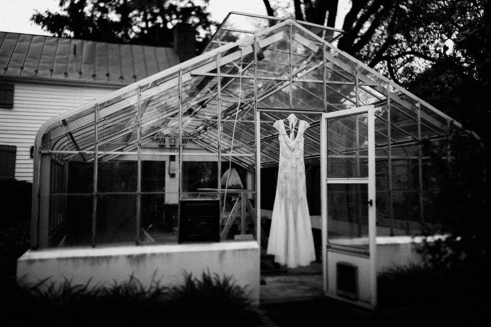 meagan abell photography backyard virginia wedding lucia and travis-7691.jpg