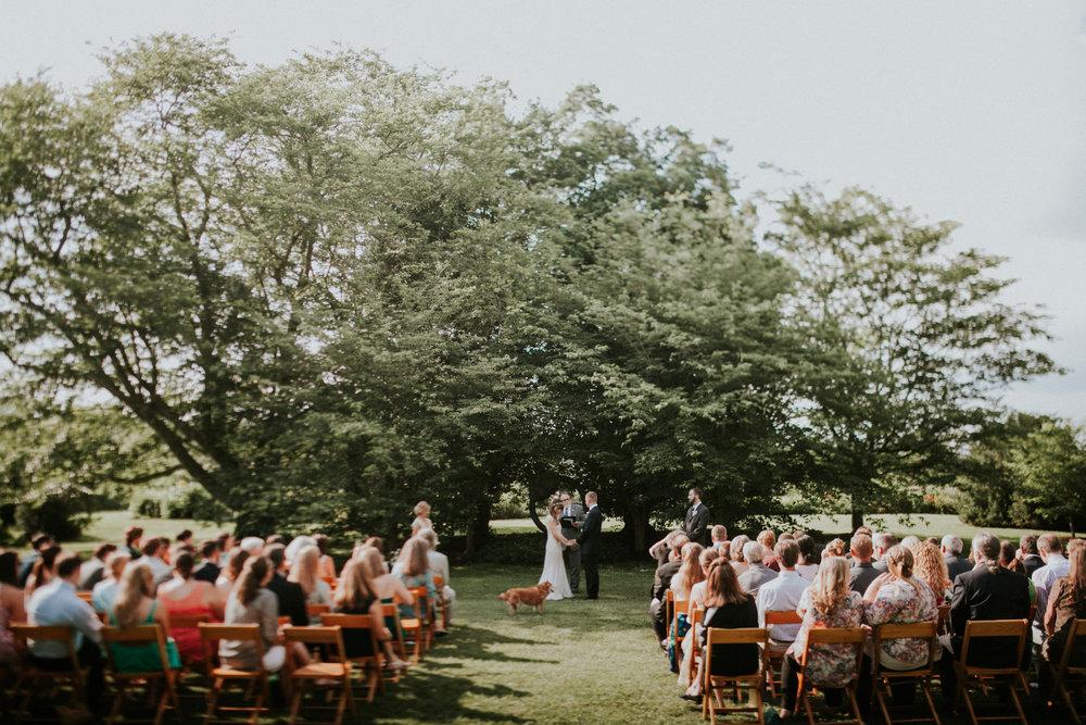 meagan abell photography backyard virginia wedding lucia and travis-1.jpg