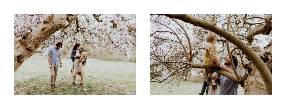 2018-04-02_0098.jpg
