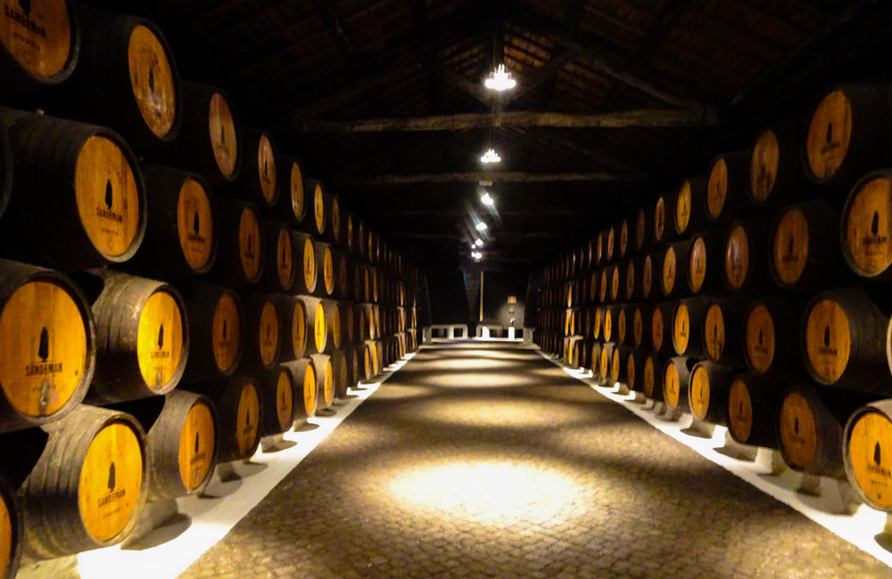 Sandeman Port House Tours - Porto   Photo:  Calvin Wood