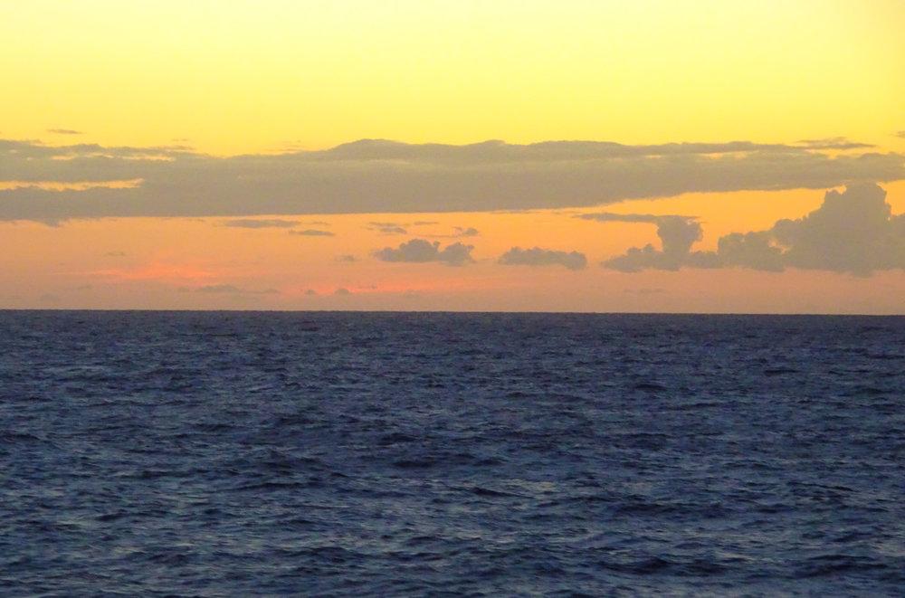 Ocean Views - Bimini's - NCL Dawn  Photo: Calvin Wood