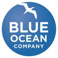 Blue Ocean Company_Scrum_Agile_Partner.png