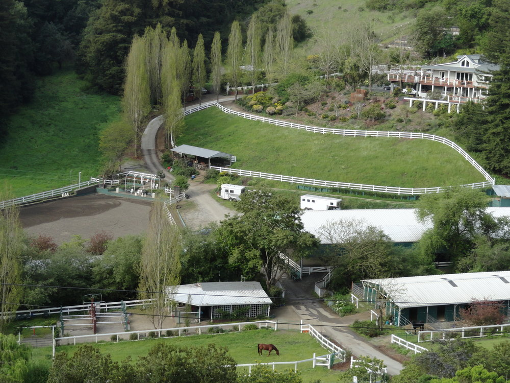 Equestrian Center - 20 and 6 stall barns with paddocks6 irrigated turnouts, Round Pen, Wash RacksIndoor lighted and outdoor arenasHay Barn, Round Pen, Office, Tack RoomsPermitted, Currently LeasedTranquil, Horses Settle In Easily and Quickly