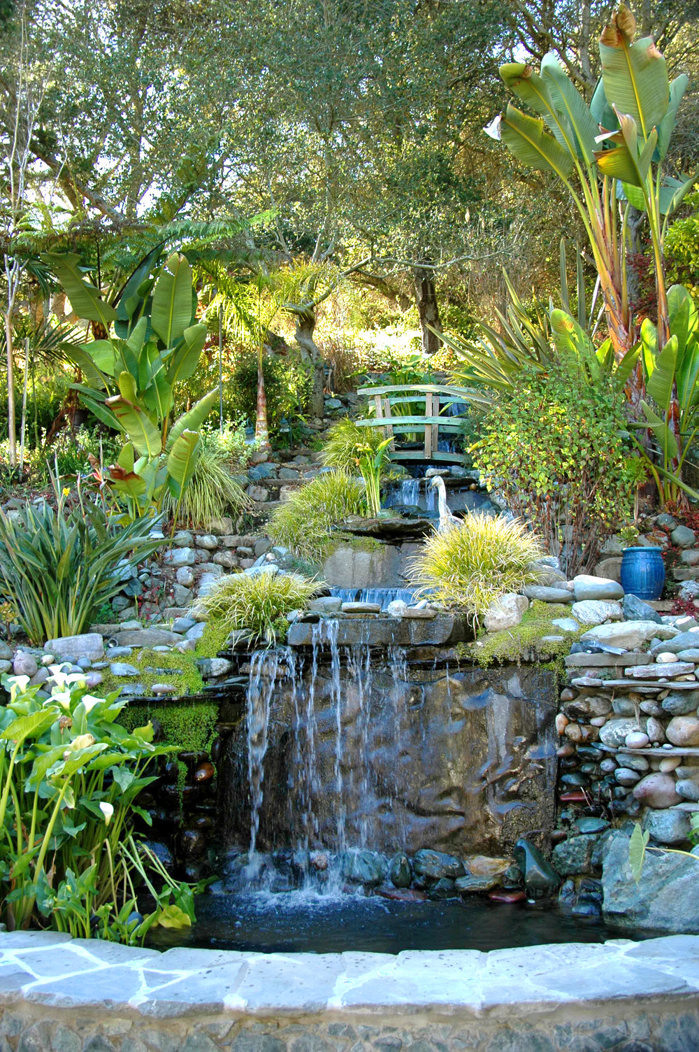 Mature Landscaping - 40' Waterfall with Koi PondShadowbrook-Like Sub-Tropical GardenOutdoor BBQ, Fireplace and KitchenExtensive Landscaping ThroughoutOver 100 Rose BushesTrees: Citrus, Plum, Apple, Pear, Asian Pear, Peach, Nectarine, Persimmon, FigNature Abounds: Quail, Ducks, Hawks, OwlsLarge Organic Terraced Garden2+ Acre Prime Pinot Noir Vineyard Location